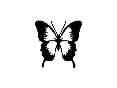 Farfalla Contorno Archit 01 Animal