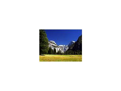 Photo Small Yosemite Meadows Travel