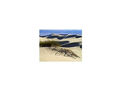 Photo Small Sand Dunes 7 Travel