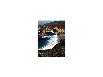 Photo Small Monterey 26 Travel