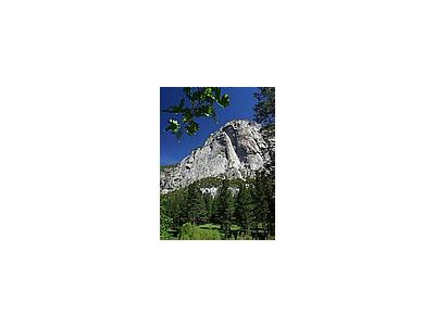 Photo Small Zumwalt Meadow Travel