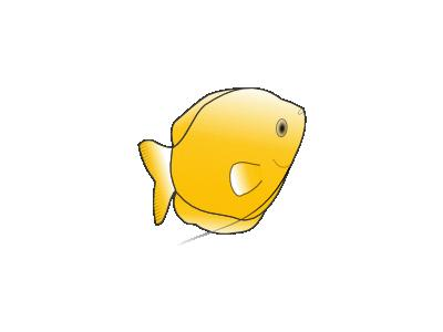 Yellow Gourami 01 Animal