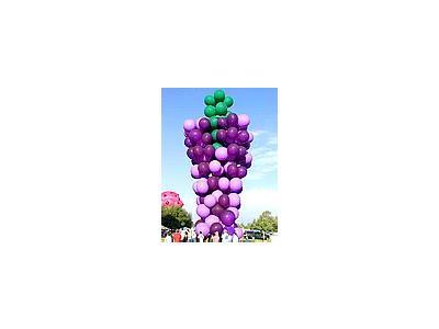 Photo Small Balloons 21 Vehicle