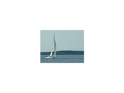 Photo Small Sailingboat Vehicle