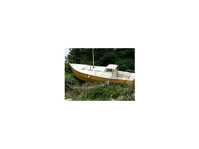 Photo Small Stranded Sailing Boat Vehicle
