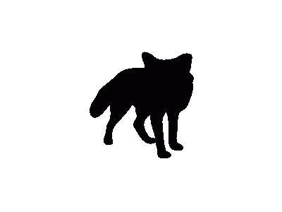 Contour Fox Animal