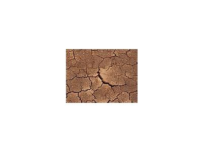 Photo Small Dried Mud Other