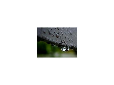 Photo Small Rain Drops Other