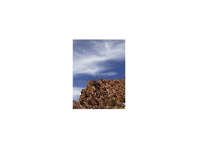 Photo Small Anza Borrego Desert Other