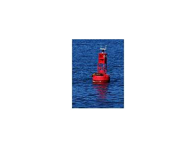 Photo Small Buoy Seal Other