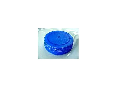 Photo Small Milk Cap Other