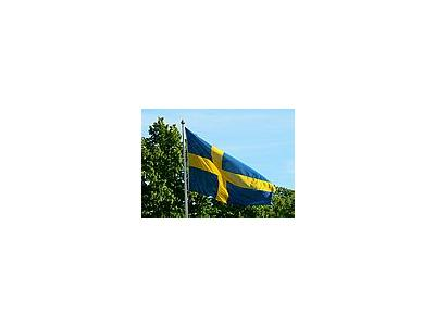 Photo Small Swedish Flag Other