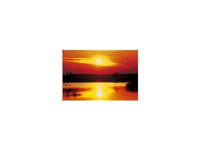 Sunset At Blackwater National Wildlife Refuge 00077 Photo Small Wildlife