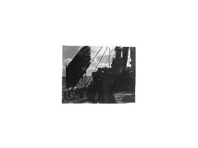 Balsa Raft On Cargo Ship During WW II 00171 Photo Small Wildlife