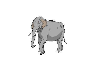 Elefante02 Architetto Fr 01 Animal