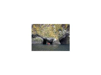 Akun Island Columnar Basalt In The Aleutian Islands Alaska 00194 Photo Small Wildlife
