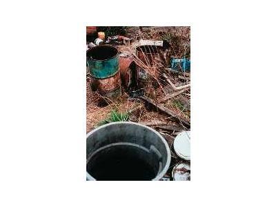 Contaminant Area Cape May National Wildlife Refuge 00235 Photo Small Wildlife