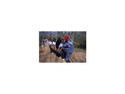 Bureau Of Land Management Group In Challenge Course At NCTC 00287 Photo Small Wildlife