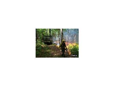 R5 Va Gdr Prescribed Fire Operations 00314 Photo Small Wildlife