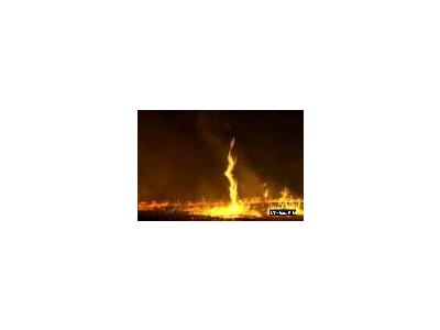 Evening Burning With Fire Whirl At Eastern Virginia Rivers National Wildlife Refuge Complex 00333 Photo Small Wildlife
