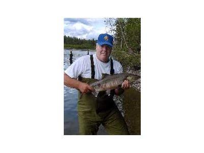 Alexander Creek Chum Salmon 00364 Photo Small Wildlife