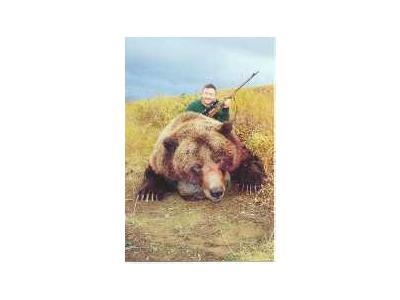 Bear Hunting 00418 Photo Small Wildlife