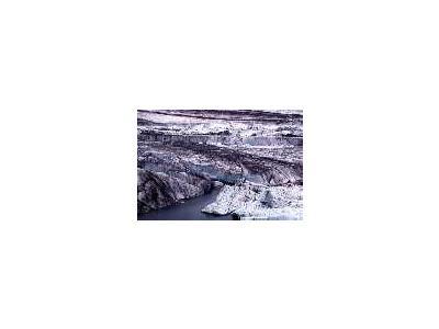 Bering Glacier 00431 Photo Small Wildlife