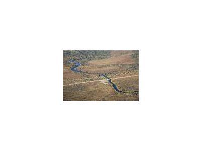 Kanuti River Dalton Highway And Trans Alaska Pipeline 00590 Photo Small Wildlife