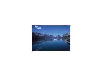 Glacier National Park 00605 Photo Small Wildlife