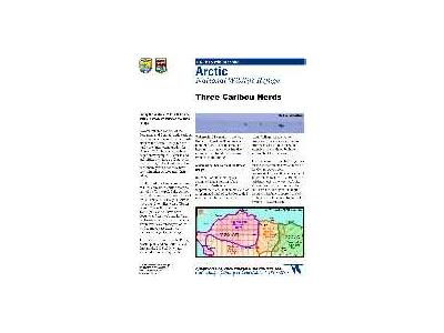 Information Map Three Caribou Herds In Arctic Refuge 2003 04 00643 Photo Small Wildlife