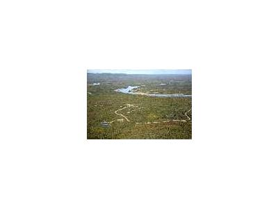 Alatna New Village Site On Koyukuk River 00668 Photo Small Wildlife