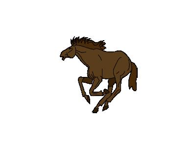 Cavallo Architetto Franc 01 Animal