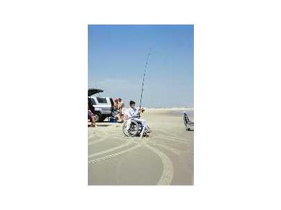WO 5447 Surf Fishing Outer Banks North Carolina 00771 Photo Small Wildlife