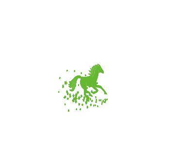 Horse 2 Konstantin R. 01 Animal