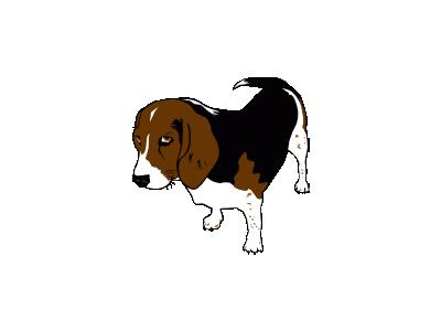 Beagle Copper Ganson Animal