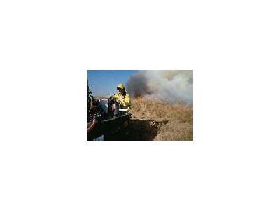 FWS Fire Crew On Prescribed Burn 00865 Photo Small Wildlife