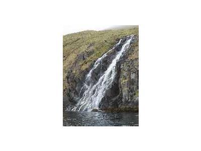 Adak Bay Of Waterfalls June 2002 Album 00915 Photo Small Wildlife