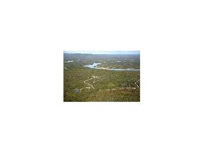 Alatna New Village Site On Koyukuk River 00987 Photo Small Wildlife
