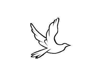 Dove Symbol Animal