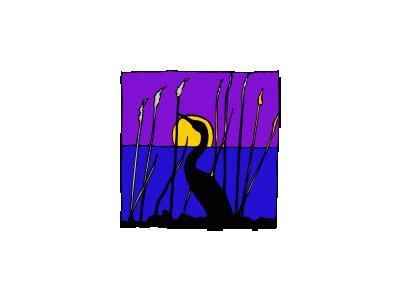 Cigno Di Notte Nella Pa 01 Animal