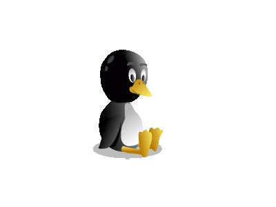 Bb Pingu  Computer