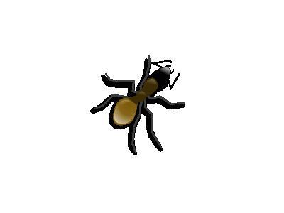 ANT Computer