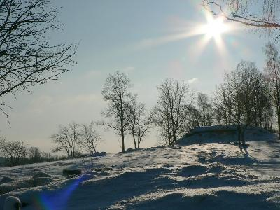 Photo Big Sunshine On Snowy Tree Hill Landscape