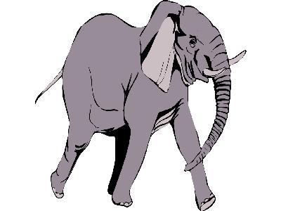 Elefante In Corsa Big Other