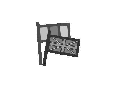 FLAG Computer