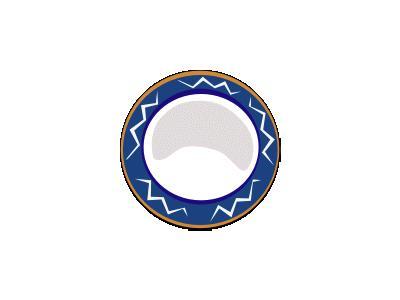 Large Plate Food
