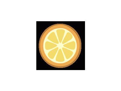 Rondelle D Orange 01 Food