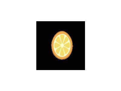 Rondelle Orange 01 Food