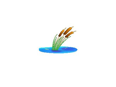 Reed Gmv  Plants