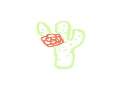 Cactus Linda Kim 01 Plants